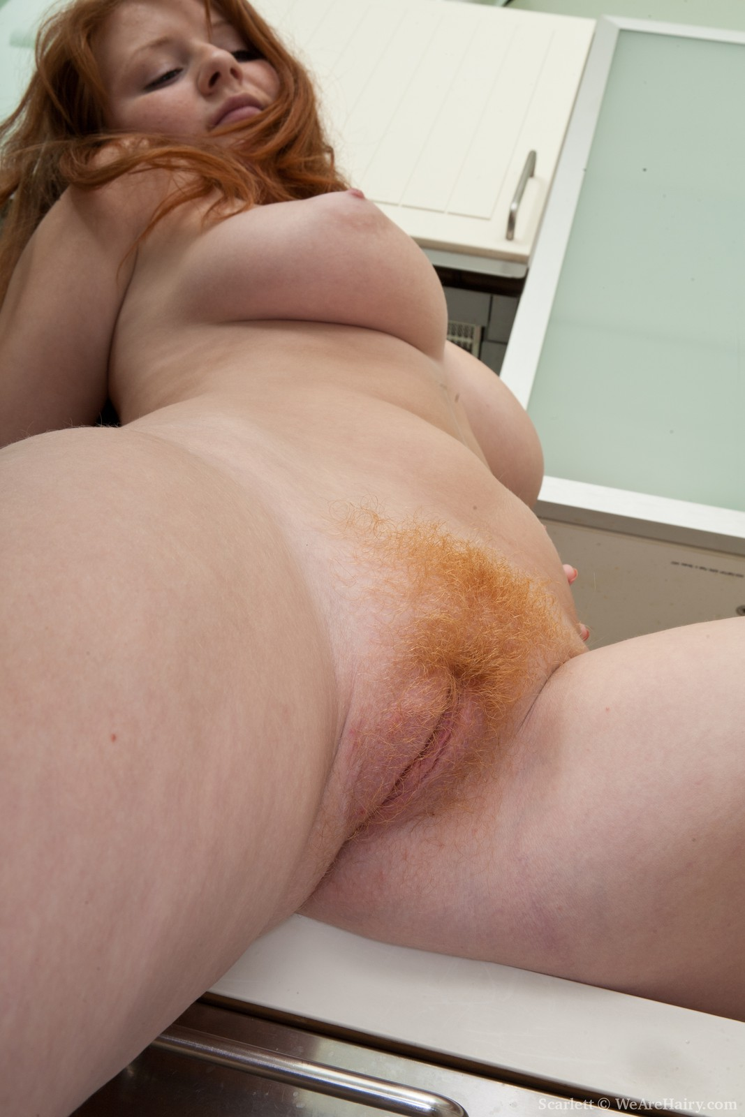 all natural hairy red pussy